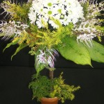 2019 - 04 Topiary 5